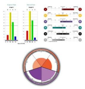 bar graph and pie chart samples from EQ assessment
